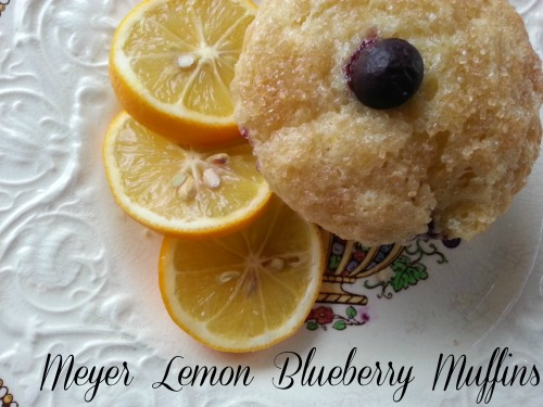 Meyer Lemon Blueberry Muffins | Dinner Is Served